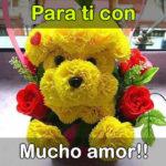 Imagenes de rosas amarillas bonitas