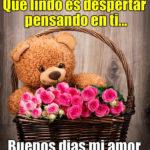 Imagenes de osos y rosas para ti