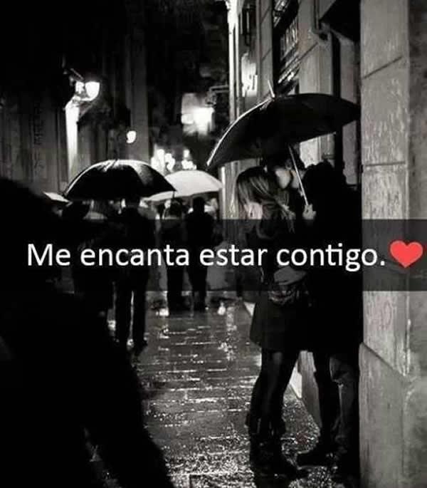 contigo amor