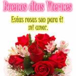 Imagenes de amor y rosas para ti