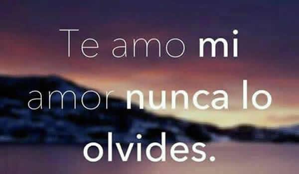 Imagenes Con Frases De Te Amo Amor Consejosdeldiacom