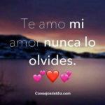 Imagenes con Frases de te amo amor