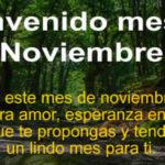 Bienvenido Noviembre con frases lindas