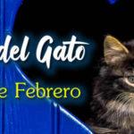 Feliz dia del Gato 20 de Febrero