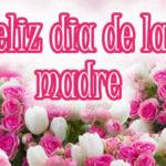 Frases de Feliz dia de la madre 2021 con fotos