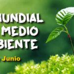 Dia Mundial del Medio Ambiente 2021 - 5 de Junio